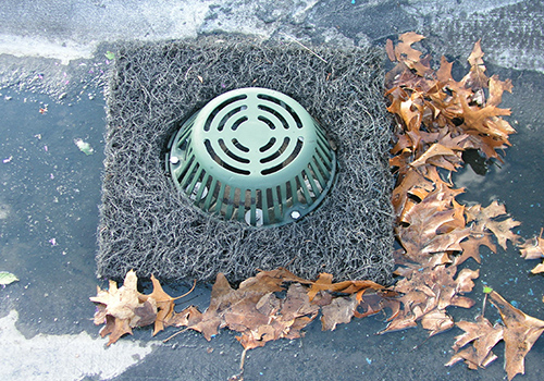 Roof drain filter with leaves
